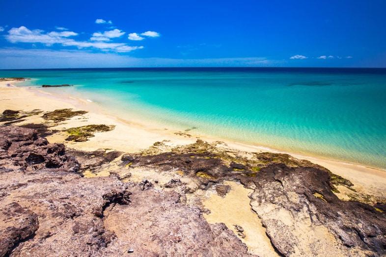 surf camp Fuerteventura