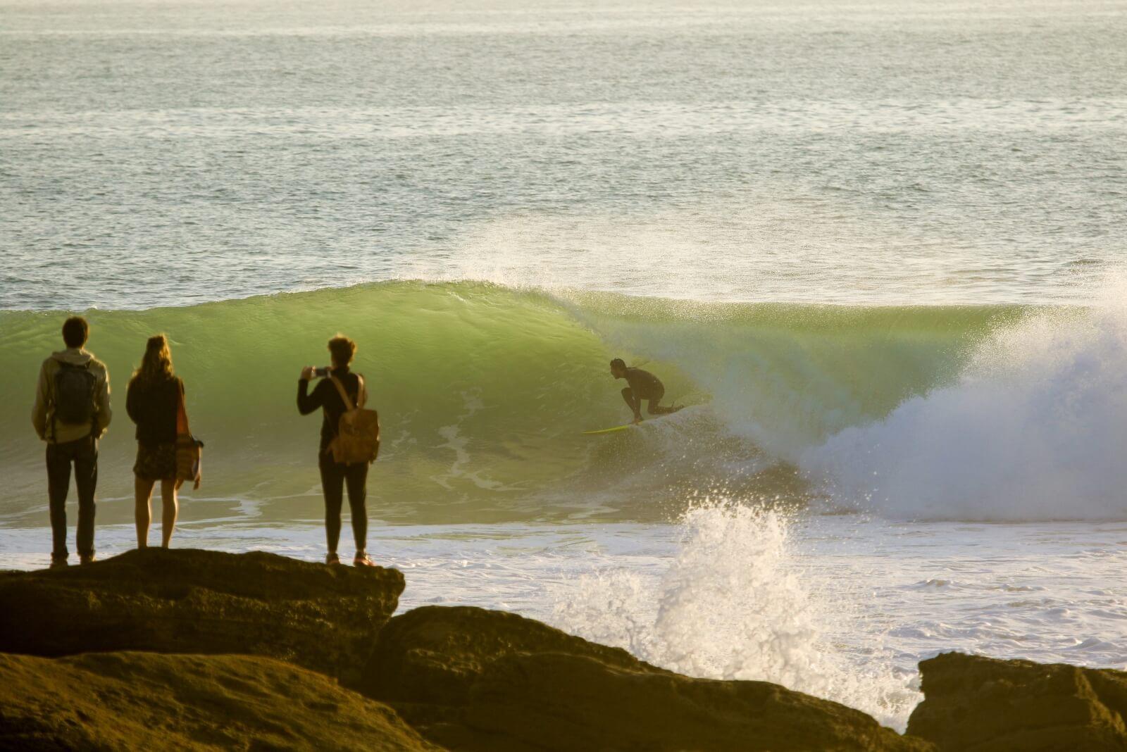 gallsurf (9)